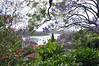 0053 Hunters Hill.jpg (Tom Bruen1) Tags: 2016 arianaschristening huntershill jacarandatree