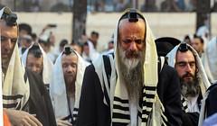 A Prayer (ybiberman) Tags: people dawn israel candid jerusalem praying streetphotography newyearsday tefillin westernwall jewishquarter phylacteries alquds tallit walingwall morningpraye