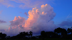 Labor Day Weekend Sunset (Jim Mullhaupt) Tags: pictures camera pink blue sunset red wallpaper sky orange sun storm color tree rain weather silhouette yellow clouds landscape photography gold evening photo nikon flickr sundown wind florida dusk snapshot picture palm exotic p900 tropical coolpix thunder bradenton endofday cloudsstormssunsetssunrises nikoncoolpixp900 coolpixp900 nikonp900 jimmullhaupt