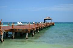 Mexico pier (davidheath01) Tags: soe nikonflickraward mexico water sea nikond5100 nikon holiday vacation wood birds pier