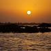 Sunset on the Sine Saloum Delta, Senegal