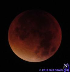 IMG_9008 (Shadow091995) Tags: red orange moon rot mond eclipse lunar bloodmoon mondfinsternis blutmond