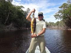 Amazonia 2012 (13)
