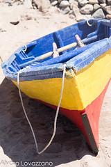 ATACAMA (Alvaro Lovazzano) Tags: chile atacama desierto pesca bote copiapo desiertoflorido 2015 pandeazúcar floweringdesert