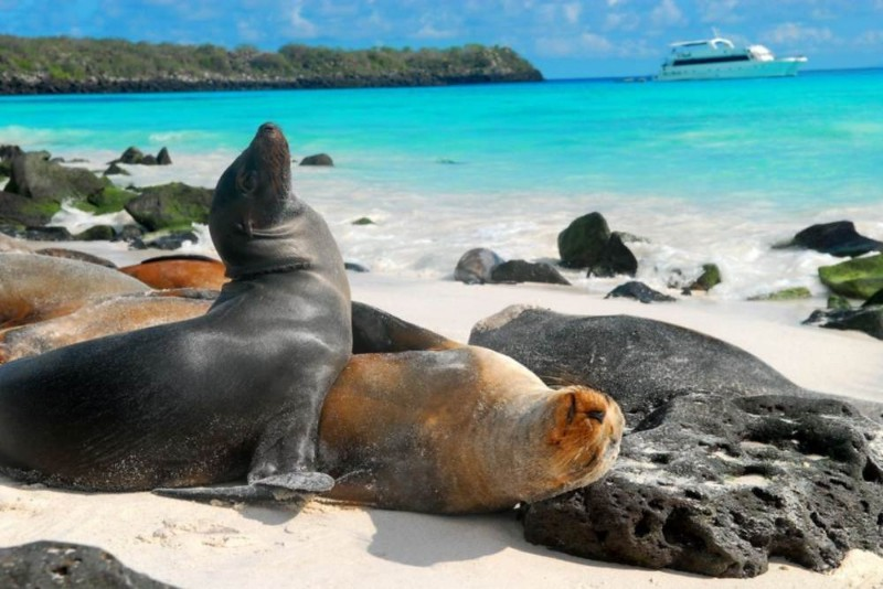 turismo-em-galapagos-15