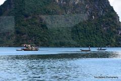 D72_7552 (Tom Ballard Photography) Tags: vietnam halongbay tourboats bayclub 20151118