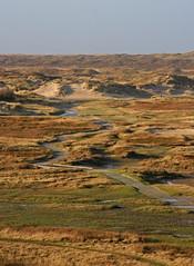 "Natuurgebied 2 ""De Slufter"" @ Texel. #Texel #slufter #natuur #nature #gebied #water #gull #Northsea #waddeneiland #wadden #Justin Sinner #pictures #seascape #landscape #Dune #dunes #eiland #island #isle #clouds #wolken #dutch #holland #netherlands #birds (JustinSinner.nl) Tags: pictures park justin seascape holland nature water netherlands dutch birds clouds landscape island wadden waddeneiland gull dunes dune natuur wolken national northsea else nothing isle parc sinner texel eiland slufter natuurmonumenten natuurgebied staatsbosbeheer nationaal gebied deslufter"