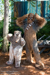 Paploo and Chewbacca (Disney Dan) Tags: 2015 character characters chewbacca chewy dhs disney disneycharacter disneycharacters disneyparks disneyphoto disneypics disneypictures disneyworld disneyshollywoodstudios ewok ewoks fl florida hollywoodstudios may orlando paploo sww2015 spring starwars starwarsweekends starwarsweekends2015 travel usa vacation wdw waltdisneyworld