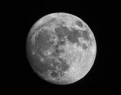 Pre-supermoon (grandmasandy+chuck) Tags: moon explore