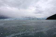 IMG_0489 (EliaZane) Tags: alaska glacier mendenhall sea ocean ice blue cruise