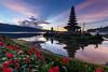 Serene Morning at Ulundanu Bratan Temple [EXPLORE] - Bali Photography Tour (Pandu Adnyana Photography Tour) Tags: sunrise bratan lake beratan bedugul temple hindu bali indonesia baliphotographytour baliphotographyguide balitravelphotography balilandscapephotography travel guide tour