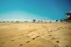 Perspiring on the beach .. (-Visavis-) Tags: newport beach california usa tracesinsand beachumbrella parasol fujix100 finepixx100