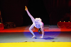 IMGP4860 (kanakacatherineb) Tags: cirque venise narbonne landri 2016 lions chameaux chiens dompteurs jongleur gymnaste