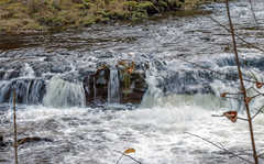 Rapids on the River Coquet, Northumberland (Beth Hartle Photographs2013) Tags: rivercoquet rapids autumn northumberland