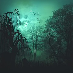 Abstract horror backgrounds for your design (emmaflindthansen) Tags: autumn background bats black green card forest celebration cemetery copyspace cross dark death design dusk evil fantasy fear flyer ghost gothic grave graveyard grunge halloween haunted holiday horror illustration invitation light moon mystery misty nature night october old poster pumpkin scary scene silhouette spider spooky texture tree vintage wood web