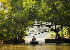 Ninh Binh, Vietnam (Maren 86) Tags: hanoi asia travel lumixg7 nature boat river water tree green
