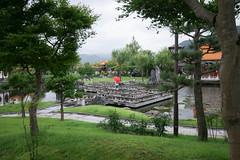 Stroll in the Garden (Jean I Cresol) Tags: july 15th 2016 enchoen yurihama yurihamatown tottori tottoriprefecture garden summer asia japan green
