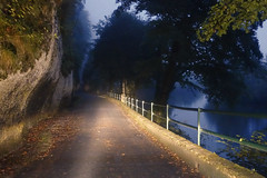Cliff Corridor (Islxndis) Tags: beam bluelight cliff dordogne earlyhours earlymorning headlamps headlights mist morning night pasdumiroir ray river road rock roquesaintchristophe vezere mysterious
