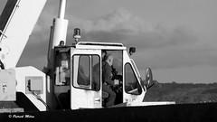 Crane driver (patrick_milan) Tags: work worker travail travailleur labeur labour people gens bateau ship boat voilier pêche sailing fishing iroise ocean port harbour quay quai buoyant buoy