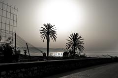 sunset-villa-san (mdc-photo-graphic.com) Tags: italy italien sunset sky trees sea taormina sicilia sizilien outdoors
