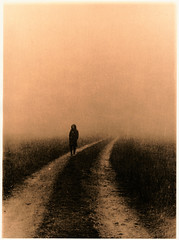 - (Sebastian Grber) Tags: lith fomatone fog autumn analog print