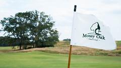 Mossy Oak Pin (cnewtoncom) Tags: mossy oak golf club mississippi gil hanse architecture gilhanse golfarchitecture mossyoakgolfclub