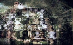 Le parc étonnant (Sebmanstar) Tags: couleur color creative creatif creation art pentax photography image imagination imagine manipulation research europe europa france french nature digital explore