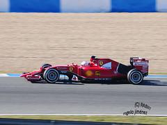 S. Vettel - FERRARI (RABIIT) Tags: f1 sauber rosberg mercedes ferrari vettel sainz toro rosso rabiit