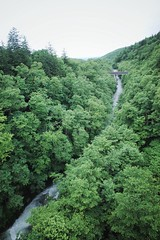 Valley (Gai) Tags:    biei hokkaido japan   summer  country  green  plant  nature   tree   water  stream  river  fall  valley   cloudy