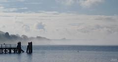 Nebel im Frhjahr in der Heikendorfer Bucht (LXXXVI) Tags: kieler frde ostsee heikendorf heikendorfer bucht meer kste wasser baltic sea schleswig holstein norden nebel frhjahr anleger dampferbrcke
