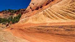 Zebra / Tunnel Slot Trail (adzamba) Tags: 2016 escalante utah unitedstates usa canyon desert deserto harriswash holeintherockrd ombrello sentiero slot trailsign tunnelslot umbrella zebraslot zebraslottrail