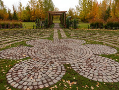 The centre of a labyrinth (annkelliott) Tags: calgary alberta canada silverspringsbotanicalgardens nature garden labyrinth bricks grass pattern centre circle circles tree trees bushes colour fall autumn fallcolour outdoor 1october2016 fz200 fz2004 annkelliott anneelliott anneelliott2016 allrightsreserved