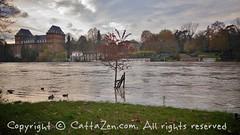 Torino (30) (cattazen.com) Tags: alluvione torino po esondazione parcodelvalentino murazzi pienadelpo cittditorino turin piemonte