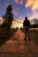 road of sunset (sm3h) Tags: sunset nikon man boy guy sun     altaif albaha