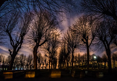 Herrnhuter Grberfeld (matthias_oberlausitz) Tags: herrnhut oberlausitz friedhof grberfeld brdergemeinde unitt nacht sternenhimmel linden allee