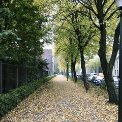 IMG_9457 (digitalarch) Tags: netherlands zaanse schans zaanseschans