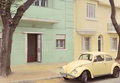 () Tags: street city autumn tree green car yellow america uruguay montevideo bicolor