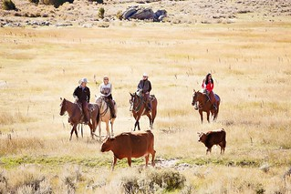 Wyoming Upland Hunting, Fishing, Horseback & Spa 23