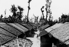 Roofs of Huts