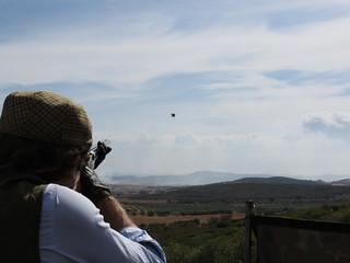 Spain Ibex Hunt & Driven Partridge Hunts 25