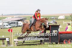 163L_0080 (Lukas Krajicek) Tags: military czechrepublic cz kon koně vysočina vysoina southbohemianregion blažejov dvoreček všestrannost dvoreek