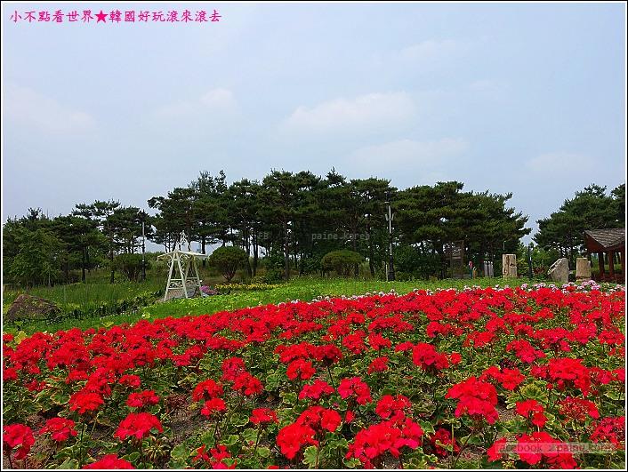 大田韓巴樹木園 (26).JPG