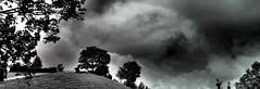 Toggenburg, Ostschweiz!  Panorama E-M5 MII (Swiss.piton (B H & S C)) Tags: panorama2x1 olympus45mmf18microfourthirdslens olympusomdem5ii em5markii zd microfourthird m43photography myswitzerland schweizerphotographen schweiz schwarzundweiss blackandwhite noiretblance kantonstgallen toggenburg microfourthirdsphotography shotforfun ibringmycameraeverywhere justmeandmycamera travelerphotos tree panorama panoramic pano swissamateurphotographers swiss easternswitzerland ostschweiz  black white mono bnw