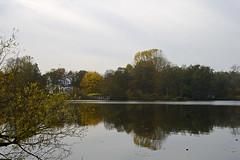 Friezenveen (Opa Jaap) Tags: autumn lake nature herfst friezenveen