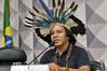 CDH - Comissão de Direitos Humanos e Legislação Participativa (Senado Federal) Tags: brasília brasil indígenas df bra cdh demarcação macuxi audiênciapública comunidadequilombola terraindígena pec2152000 telmoribeiro