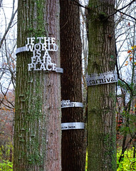 If the World is a Fair Place.... (Jae at Wits End) Tags: sculpture plant tree green art nature sign writing silver outside grey midwest exterior message outdoor text gray stlouis american missouri bark signage trunk publicart saintlouis signboard park laumeier laumeiersculpturepark