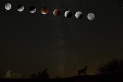 ECLIPSE LUNAR (El mirador del lobo) Tags: eclipse zamora codesal sierradelaculebra elmiradordellobo