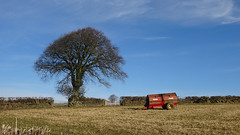 The dung spreader - February (sallyclarkephotos) Tags: dung spreader tree earlyspring