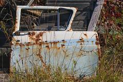 The door is all that remains (KWaterhouse) Tags: scrapyard junkyard cardoor car door metal windown abandoned forgotten old autowrecker rust rusty ontario canada nikond5300
