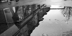 Charity puddle (robbophotography) Tags: shop street architecture monochrome blackandwhite puddle reflection